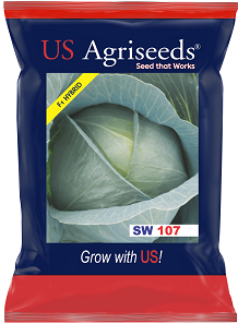 Seedworks Cabbage